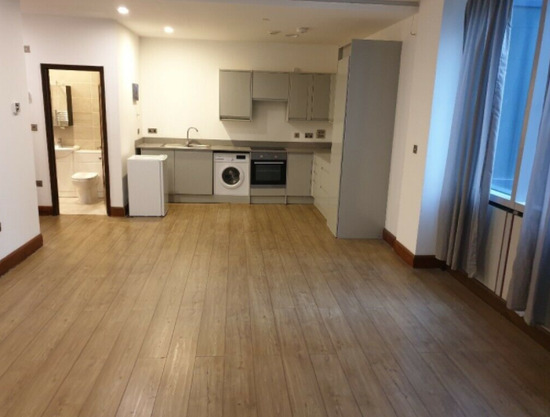 Beautiful Studio Apartment in Central Croydon-2