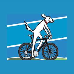 Salt Dog Cycling